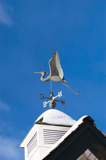 Winter weather vane : Stock Photo