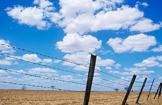 Fence of barbed wire, rural property, Brazil. : Stock Photo
