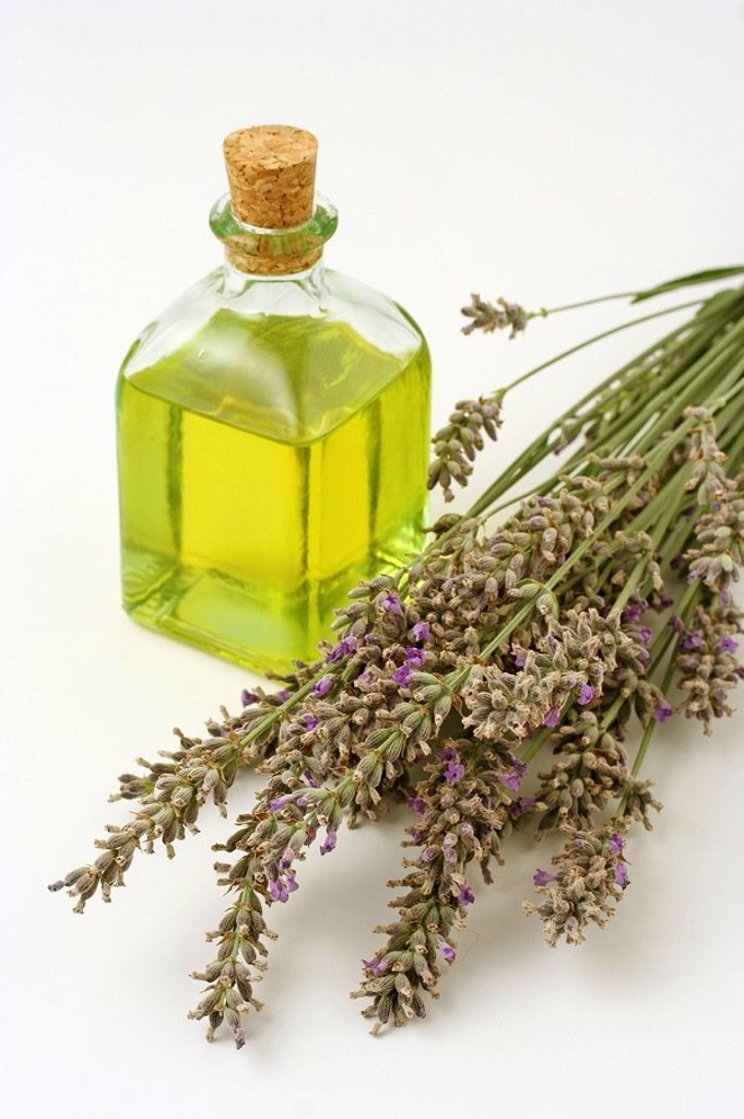 Stock Photo: 1436R-260438 Lavender essential oil (Lavandula officinalis)