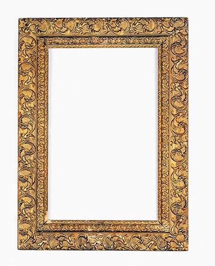 Stock Photo: 1436R-265412 An elegant Gold gilded frame