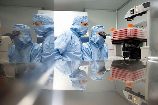 Stock Photo: 1436R-272990 Clean room, culture observation through the microscope, biopharmaceutical lab, development and production of innovative drugs using adult stem cells, Cellerix, Grupo Genetrix, Madrid