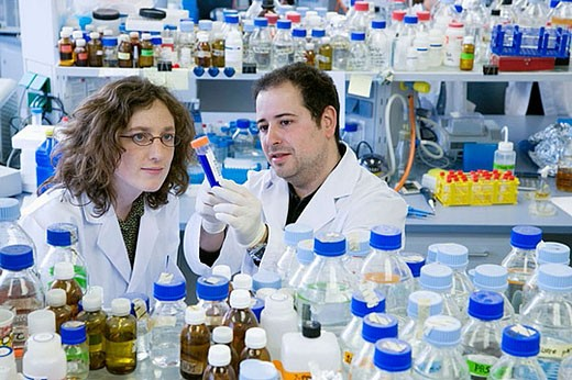 R+D department, biopharmaceutical lab, development and production of innovative drugs using adult stem cells, Cellerix, Grupo Genetrix, Madrid : Stock Photo