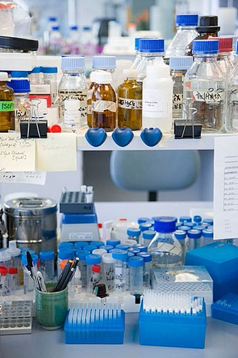 Stock Photo: 1436R-273120 R+D department, biopharmaceutical lab, development and production of innovative drugs using adult stem cells, Cellerix, Grupo Genetrix, Madrid