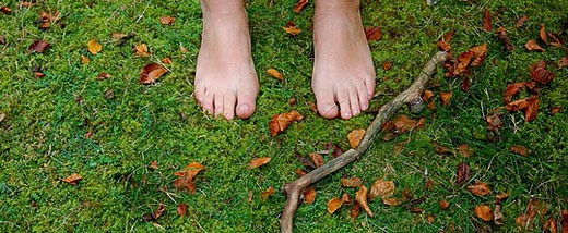 Feet on moss of forest : Stock Photo