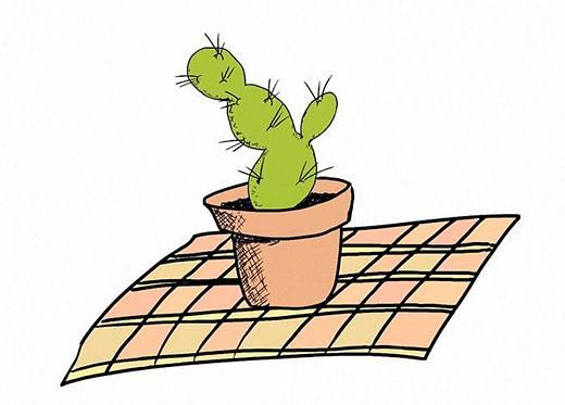 Prickly pear cactus : Stock Photo