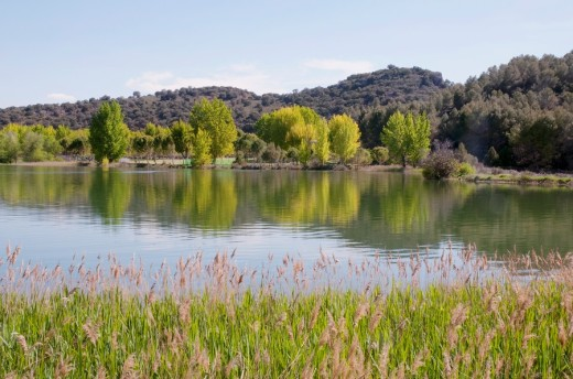 Colgada lake  Lagunas de Ruidera Nature Reserve, Ciudad Real province, Castilla La Mancha, Spain : Stock Photo
