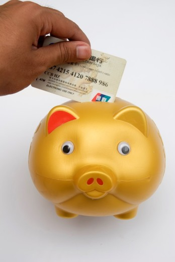 Piggy bank and Credit card : Stock Photo