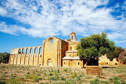 Stock Photo: 1436R-307594 Ruins of the monastery  Granja de Moreruela, Zamora province, Castilla León, Spain