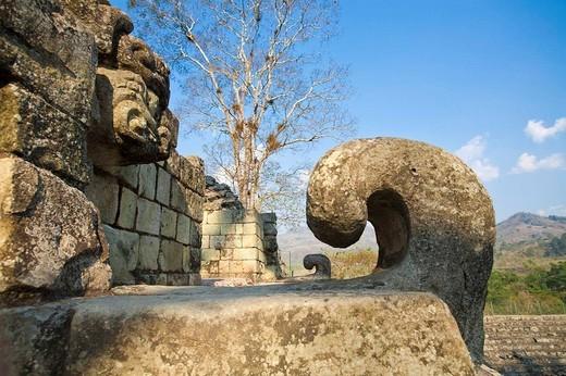 Stock Photo: 1436R-307976 Honduras, Copan Ruinas, Copan Ruins, East Court, Patio de Los Jaguares