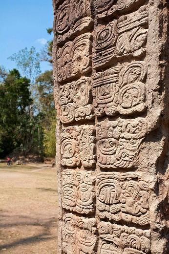 Stock Photo: 1436R-308068 Honduras, Copan Ruinas, Copan Ruins, West Court, Stela P
