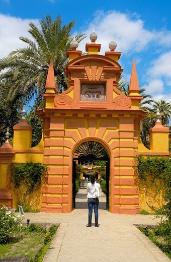 Gardens of the Alcazar, Reales Alcazares, Seville, Andalusia, Spain : Stock Photo