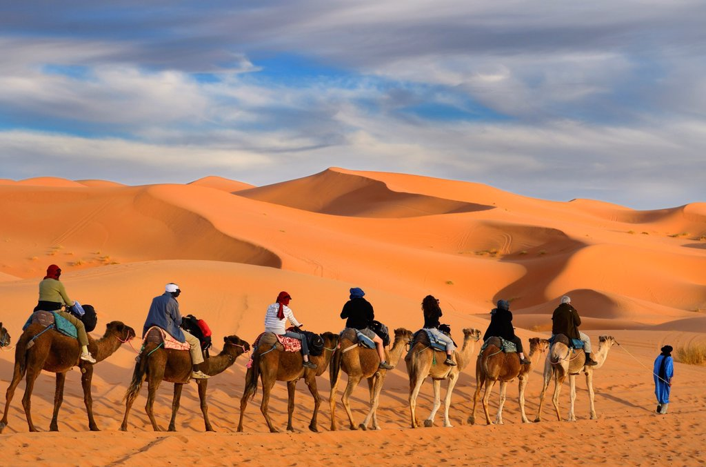 Tuareg Berber man leading a group of tourists on camels through the Erg Chebbi desert in Morocco : Stock Photo