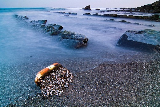 Barrika beach at sunset, Biscay, Basque Country, Spain : Stock Photo