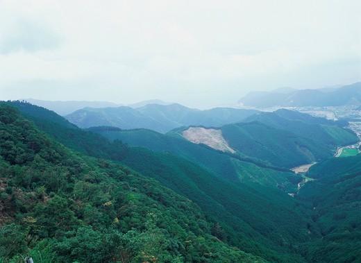 Kii Mountains : Stock Photo