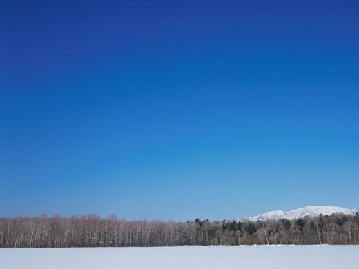 Winter landscape, Hokkaido, Japan : Stock Photo