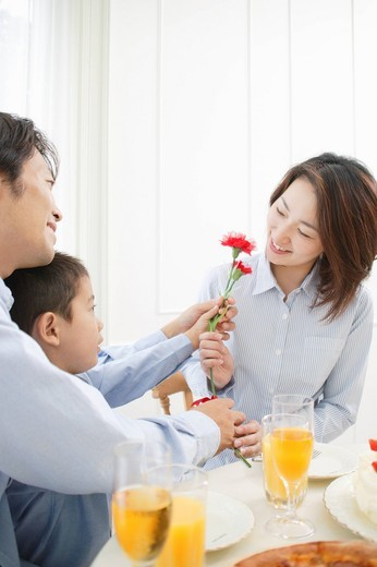 Stock Photo: 1436R-325948 Son giving flower to mother