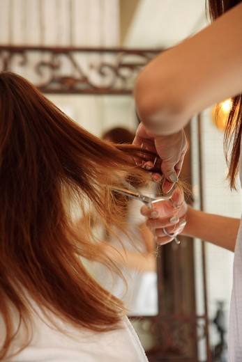 Hairdresser cutting womans hair : Stock Photo
