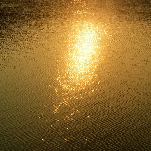Sunlight reflected on water surface : Stock Photo