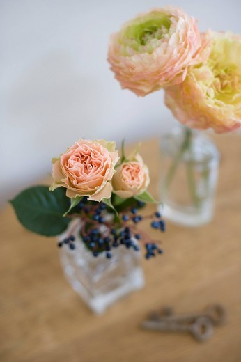 Stock Photo: 1436R-344848 Flower arrangement