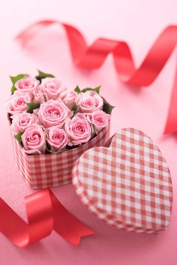 Pink rose in heart shaped box : Stock Photo