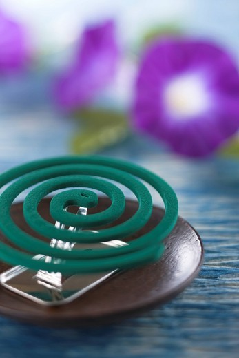 Stock Photo: 1436R-348019 Mosquito Coil