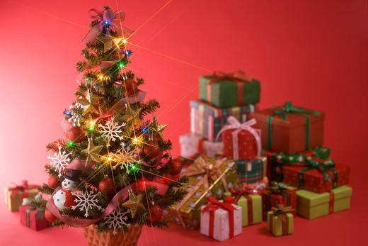 Stock Photo: 1436R-348080 Christmas Tree and Present