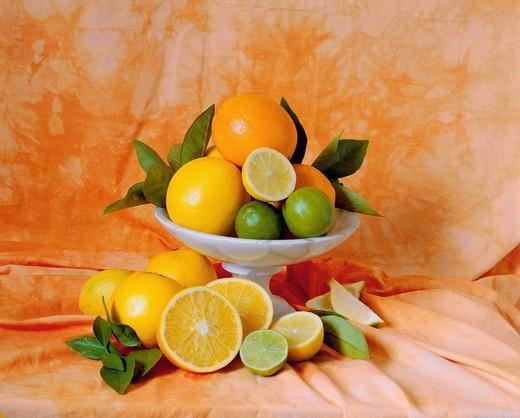 Citrus fruits : Stock Photo