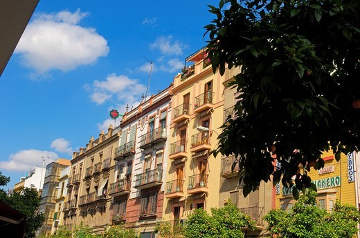 Typical façades in Santa Cruz neighborhood, Seville, Andalusia, Spain : Stock Photo