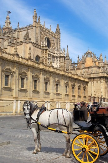 Stock Photo: 1436R-363232 Cathedral, Seville, Andalusia, Spain
