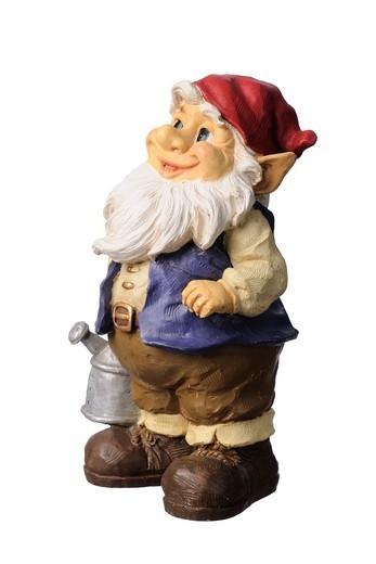 Colourful garden gnome : Stock Photo