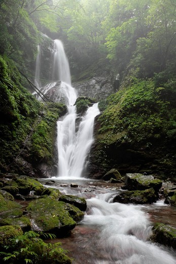 Stock Photo: 1436R-432981 Amagoi Waterfall, Kamiyama, Myozai, Tokushima, Japan