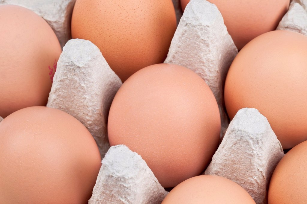 Stock Photo: 1436R-435106 Tray of red eggs