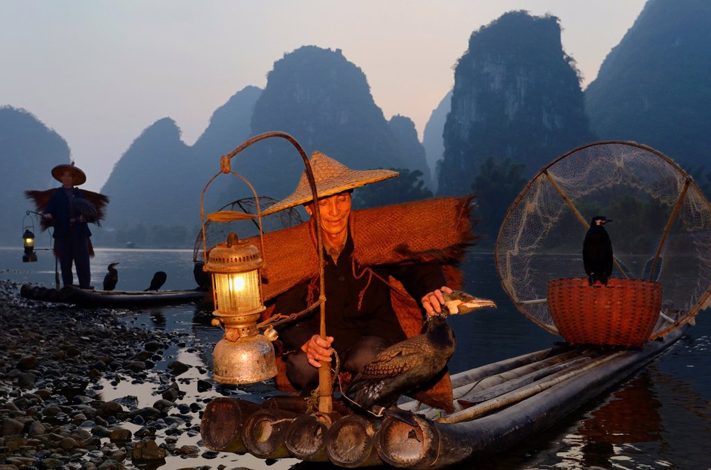 Stock Photo: 1436R-436391 Chinese fishermen with cormorants at dawn on the Li river Yangshuo China