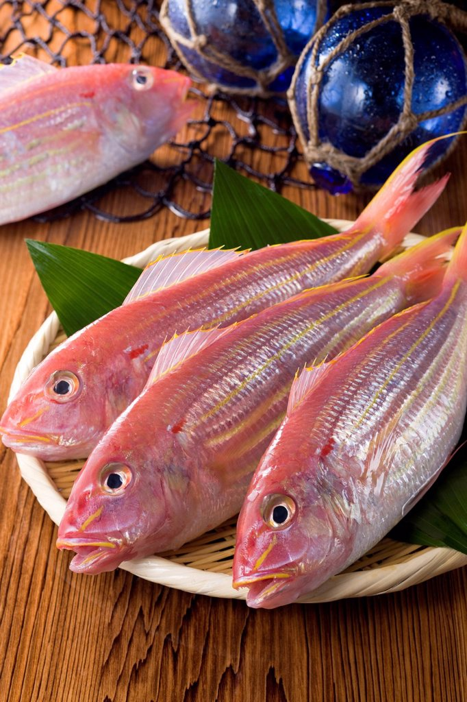 Stock Photo: 1436R-443916 Golden Threadfin Bream