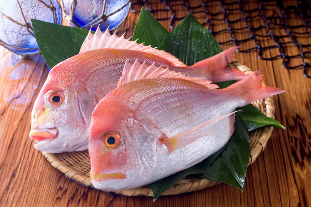 Stock Photo: 1436R-443928 Yellowback Sea Bream