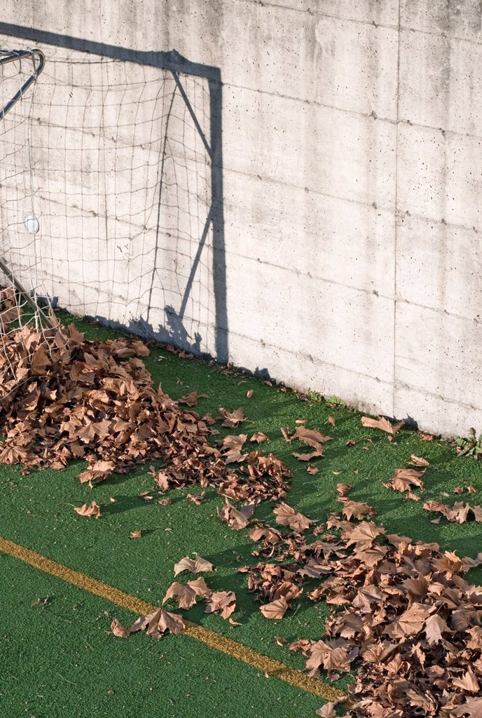 Fallen leaves on football court play area : Stock Photo