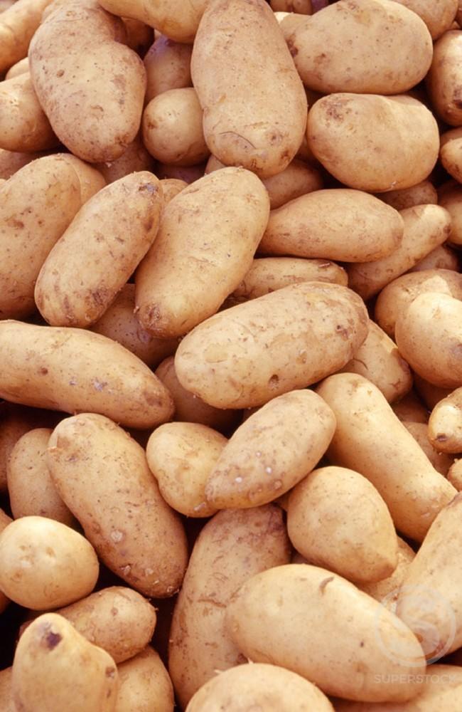 Potatoes : Stock Photo
