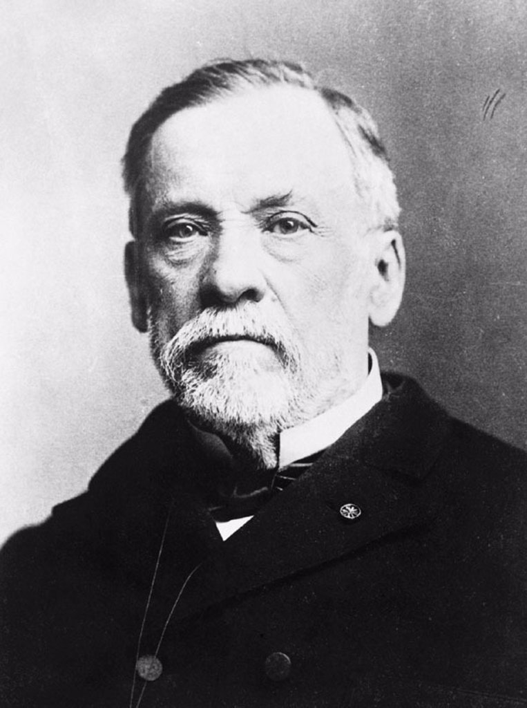 Stock Photo: 1436R-87018 Louis Pasteur, french chemist and microbiologist (1822-1895)