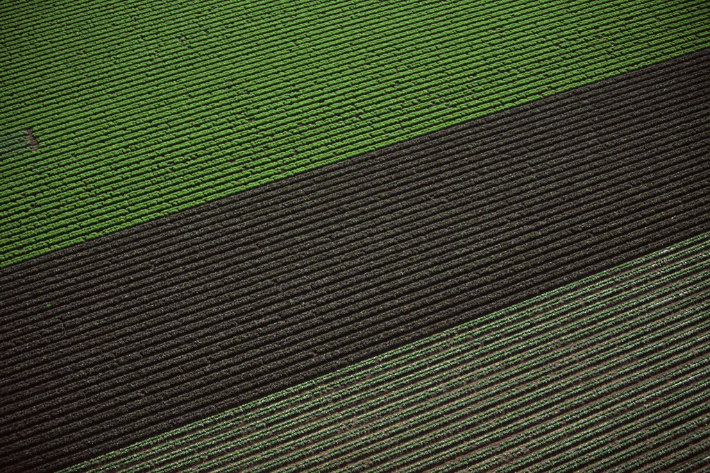 Aerial view of arable farm : Stock Photo