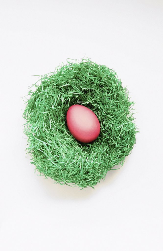 Easter egg in nest : Stock Photo