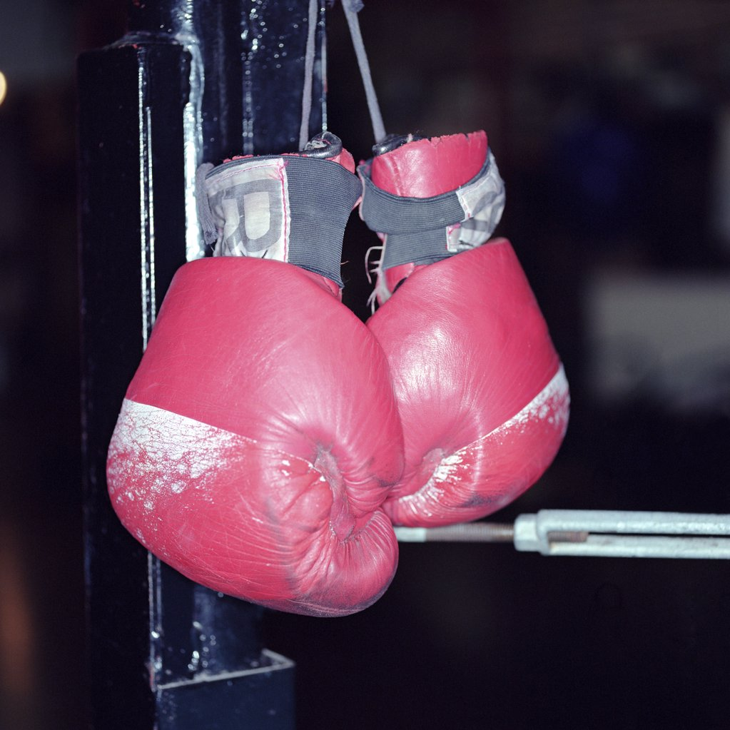 Stock Photo: 1439R-03825 Boxing gloves