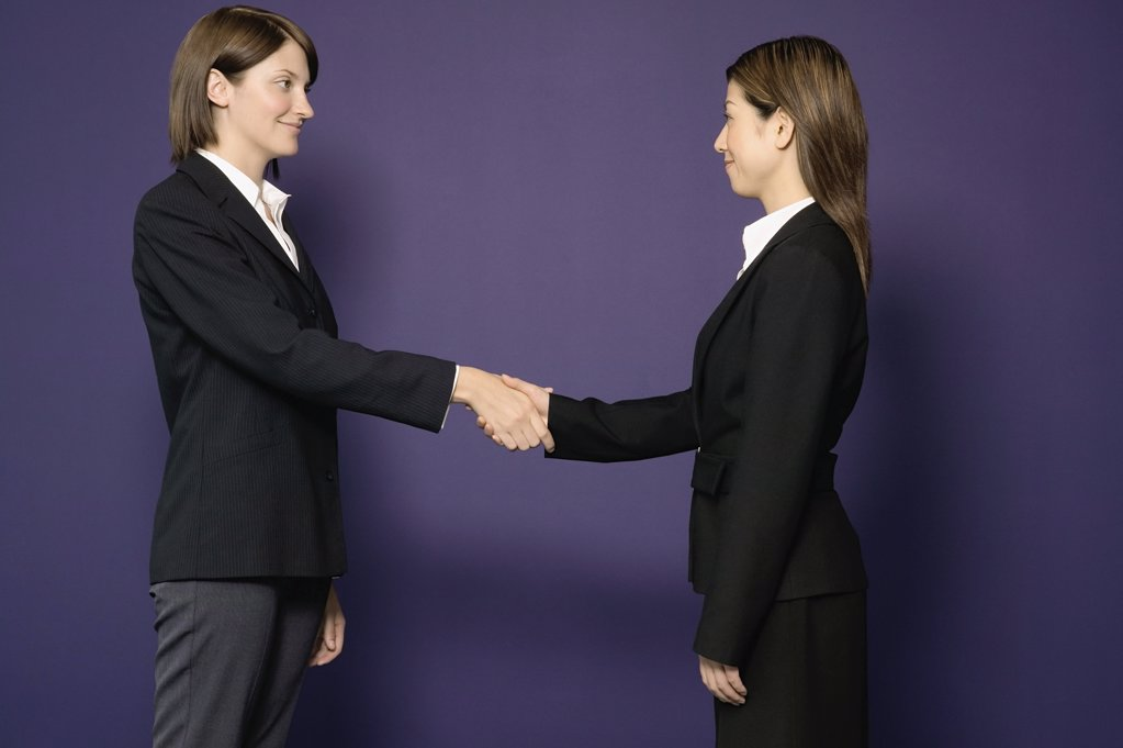 Businesswomen shaking hands : Stock Photo