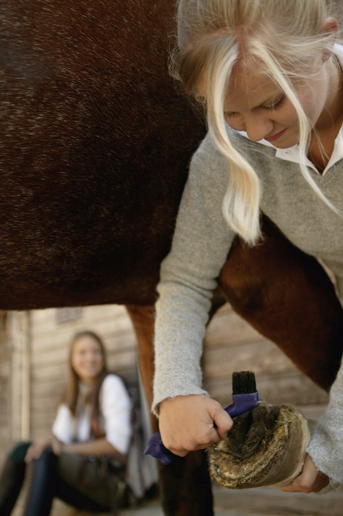 Stock Photo: 1439R-07575 Young woman cleaning horse's hoof
