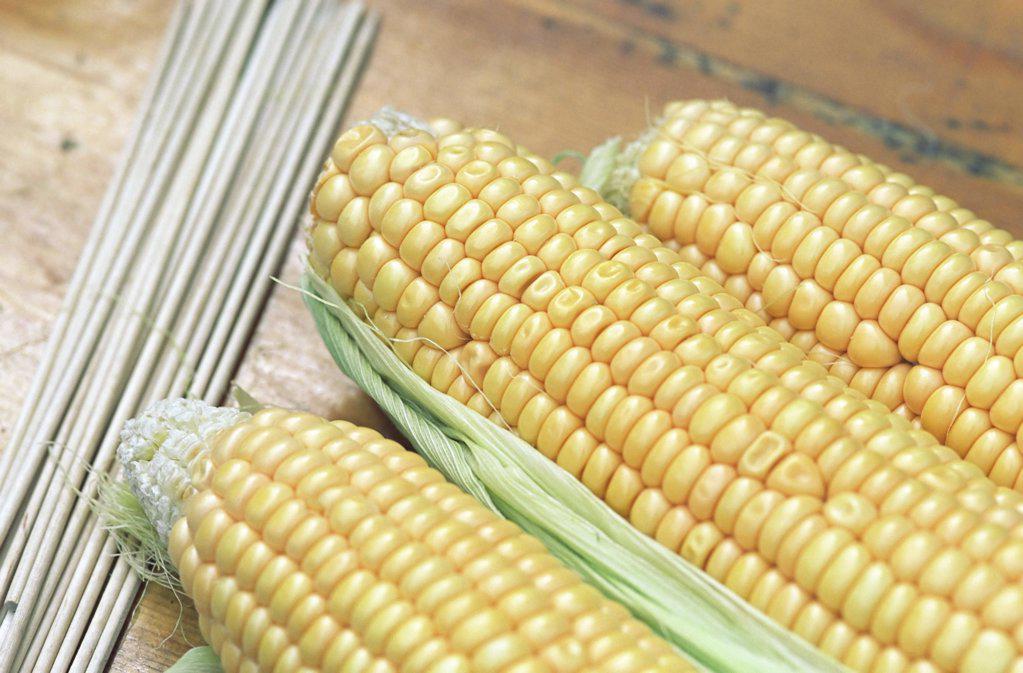 Three cobs of corn. : Stock Photo