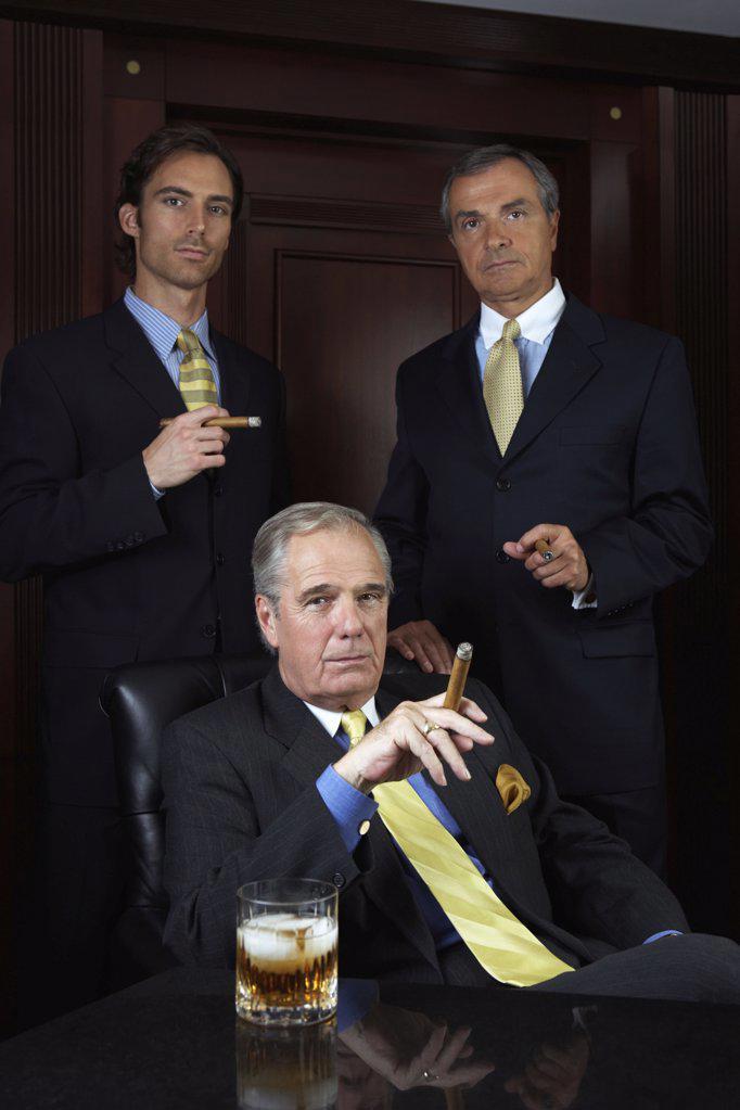 Portrait of three businessmen : Stock Photo
