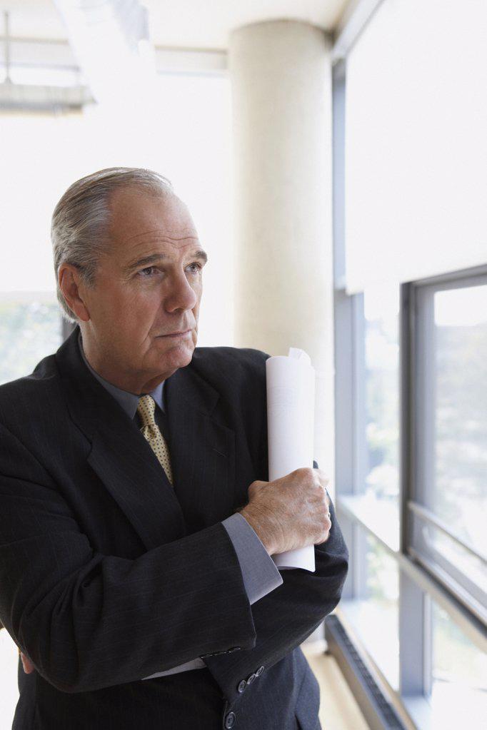 Portrait of a senior businessman : Stock Photo