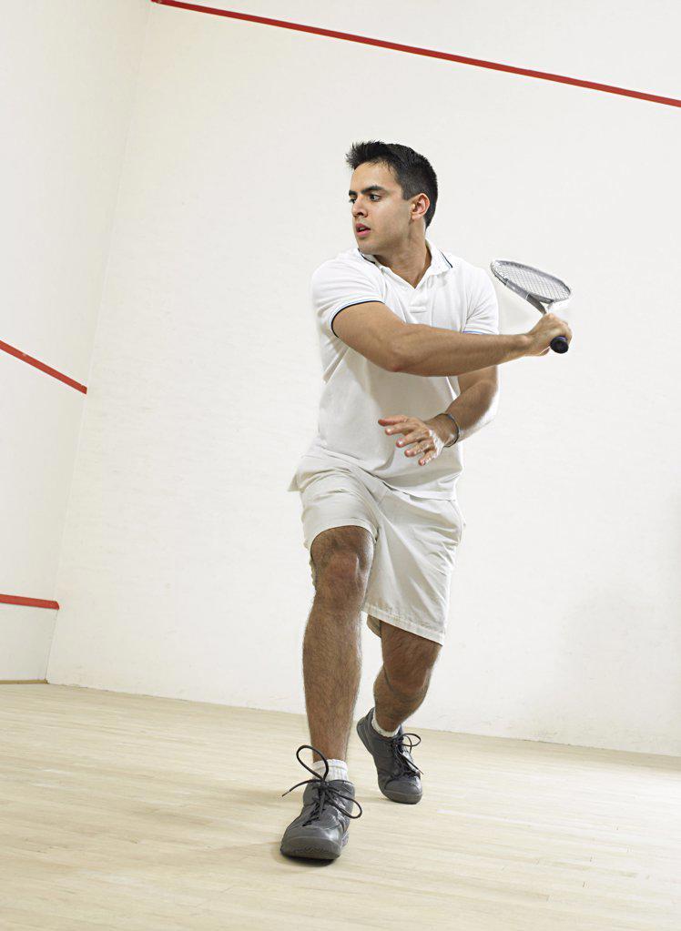 Male squash player : Stock Photo
