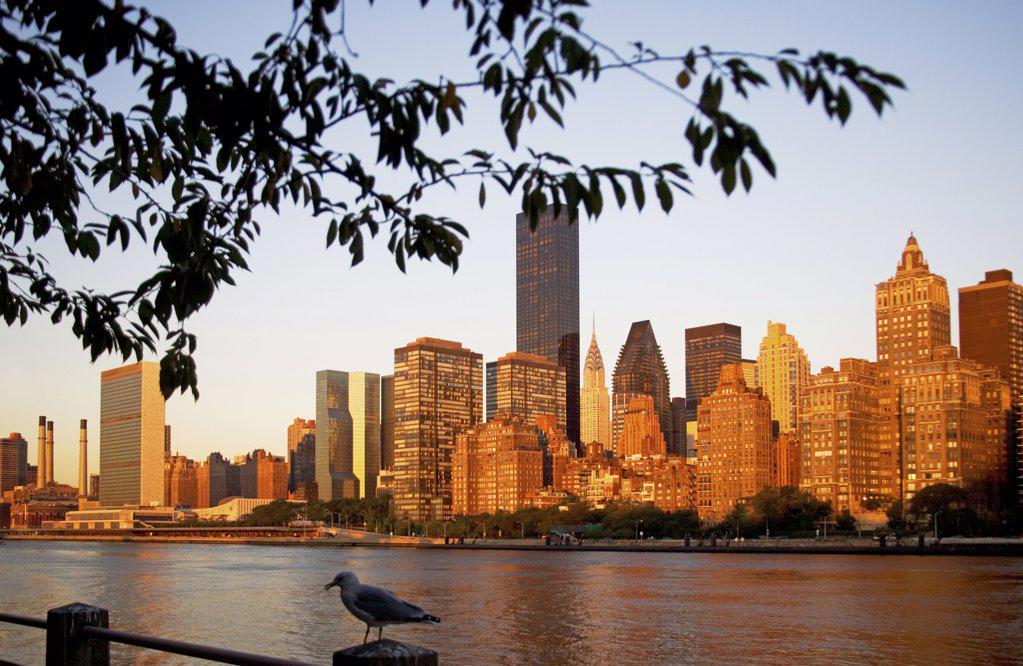 New york skyline : Stock Photo