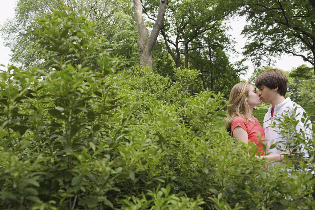 Stock Photo: 1439R-1017329 Teenagers kissing behind a bush