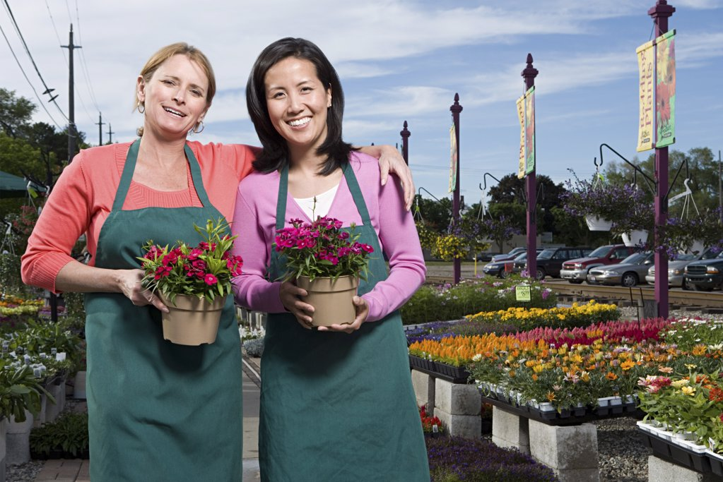 Two shop assistants holding flowers : Stock Photo